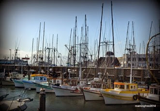 Fishing Boats at Fisherman's Wharf