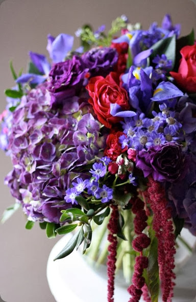 iris 409376_10150820717223868_46298268867_12429272_1419494095_n bella fiori