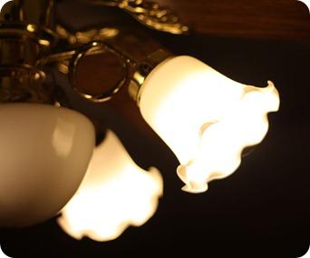 olivia and light 0910091
