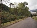 停車場往風景區的道路