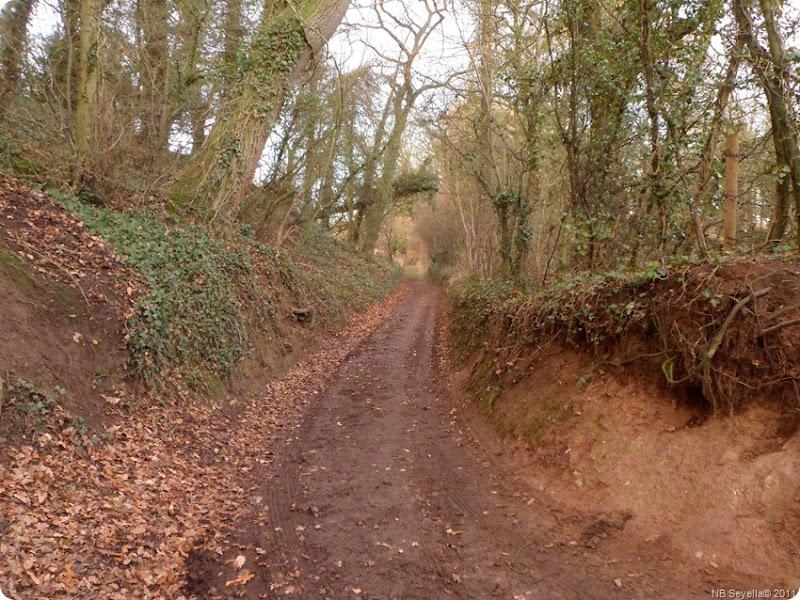 SAM_0002 Quarry Lane