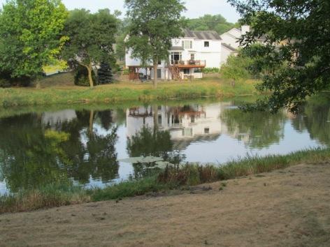 DroughtDriesUpthePlants-2-2012-07-24-15-20.jpg
