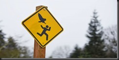 it-s-no-hoot-oregon-city-to-post-signs-about-attacking-owl