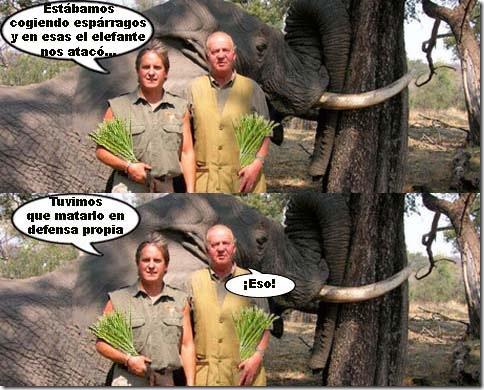 reyelefantes