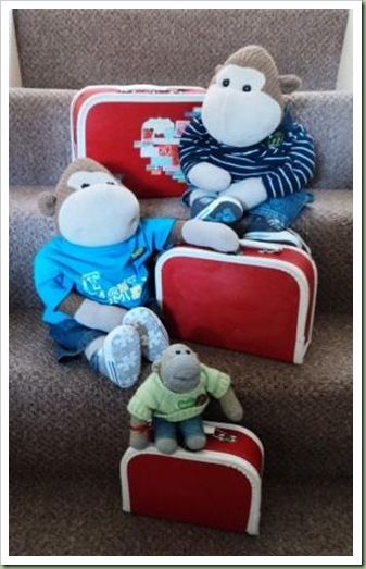 Suitcases packed for Brixham Holiday