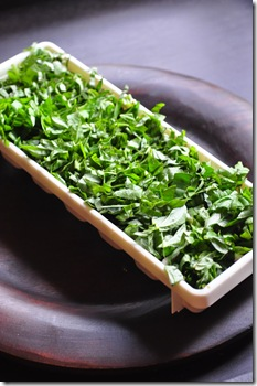 basil_tray_full