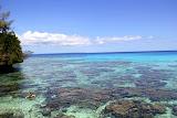 A Snorkeler's Paradise: The Baie of Jinek - Lifou, New Caledonia