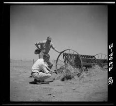 Members of a drought committee at a farm near Guymon, Oklahoma in 1936, during the extended drought that caused the 'Dust Bowl'. Photo: Arthur Rothstein / Library of Congress