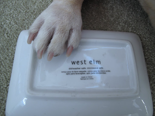 Well, this clever person purchased a plain soap dish from West Elm and proceeded to make this amazing creation.
