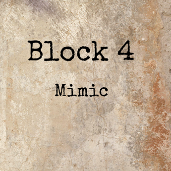 Block 4 - Mimic