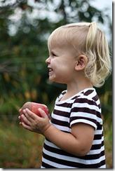 Apple picking, Sadie 8