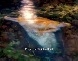 Bonny Swans - Video Capture 2