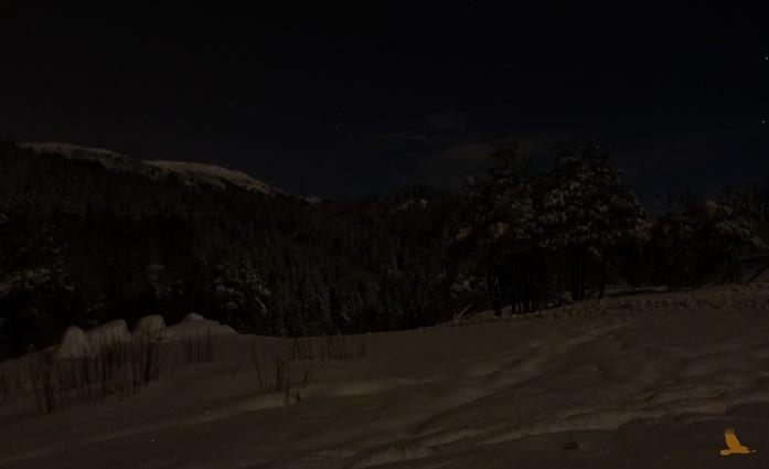 Månskinn på Livarden