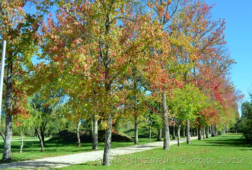 Glória Ishizaka - Folhas de Outono - Portugal 21