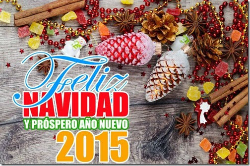 feliz 2015 airesdefiestas com (37)