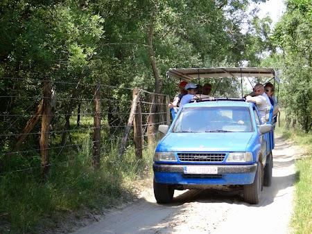 08. Masina de safari - Letea.JPG