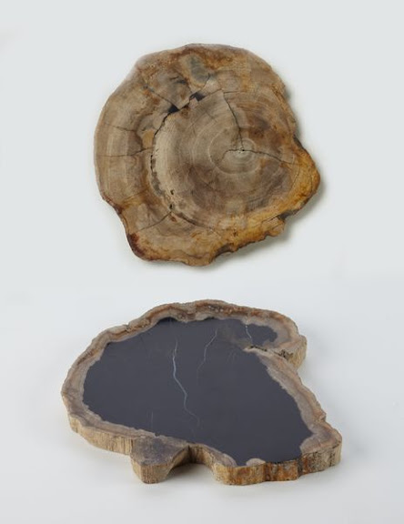 petrified-wood-holder.jpeg