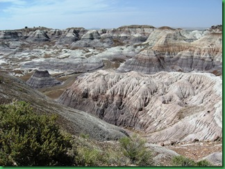 Painted Desert & Petrified Forest 238
