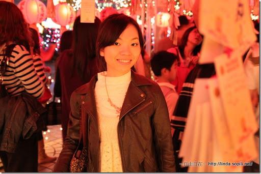 2010台北燈節(台北燈會)-又是我啦!