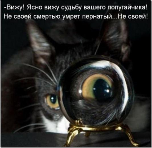 e0449ad62885bd59ac564e83950_prev
