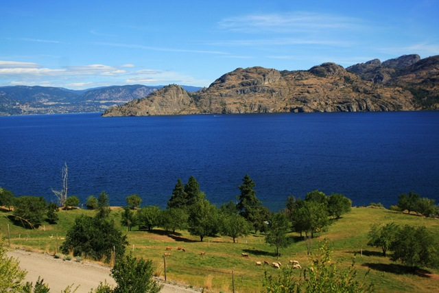 View from above Okanagan Lake Provincial Park