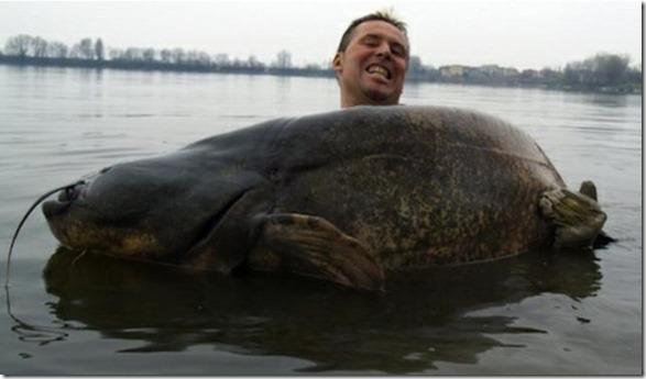 big-fish-fishing-16