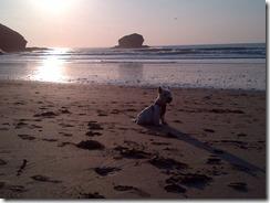 Cornwall-20130605-00581