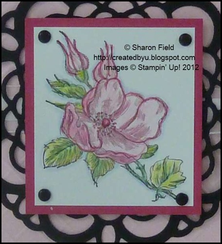 6 different markers were used to colorize the pretty magnolia bloom on today's card share