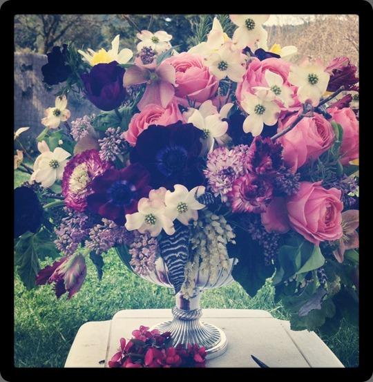 535830_10151846738933868_1197418619_n bella fiori