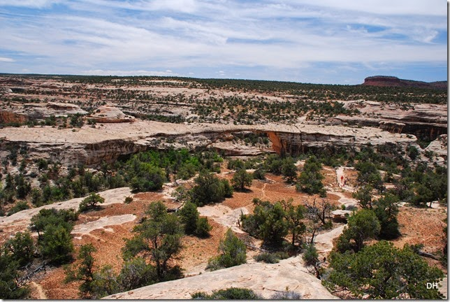 05-17-14 B Natural Bridges NM (126)