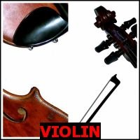 VIOLIN- Whats The Word Answers