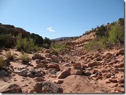 2012-04-16 Fry Canyon, UT