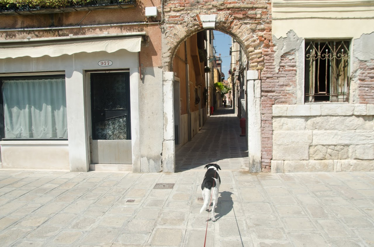 Cannaregio