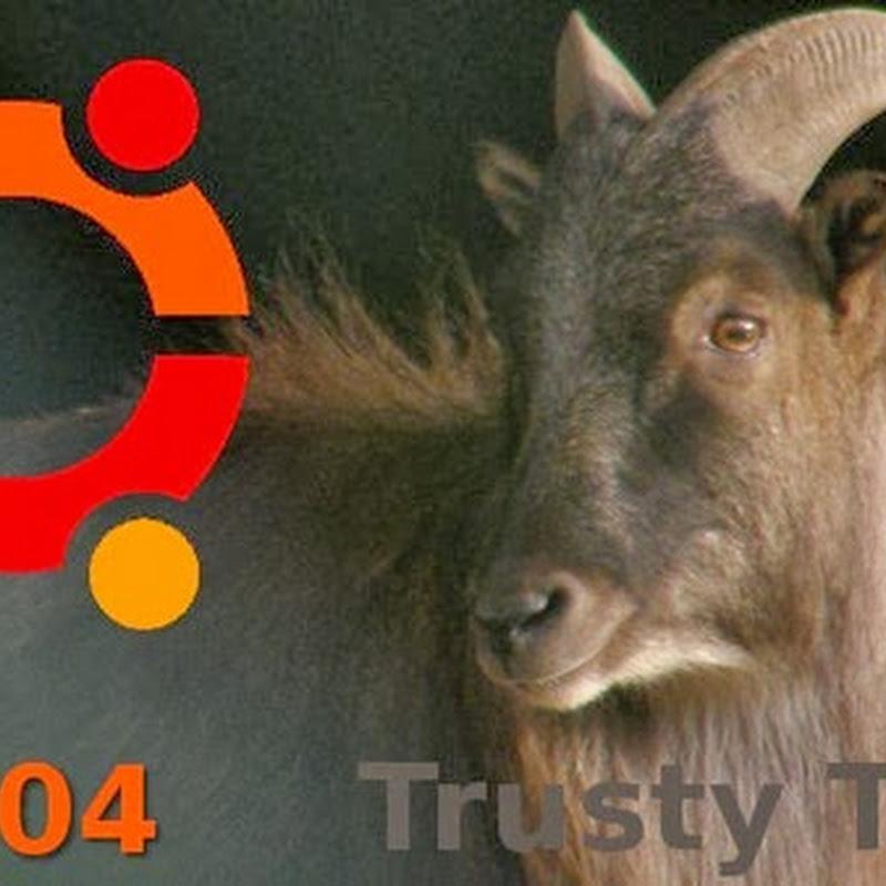 I 10 articoli piu cliccati nel Regno di Ubuntu nel mese di Dicembre 2013.