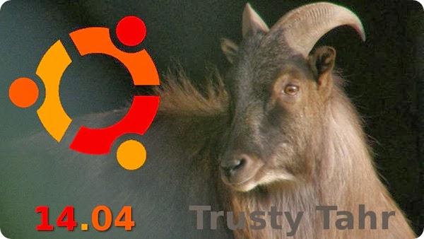 trusty tahr