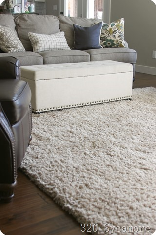 shag rug in family room