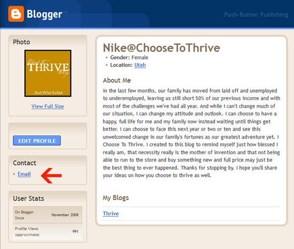 Blogger User Profile Nike@ChooseToThrive - Mozilla Firefox 1132011 100356 AM.bmp