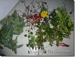 grønt til blomsterbinding