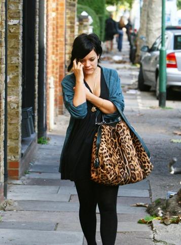 celebrities-leopard-print-bags-09012011-06-675x900