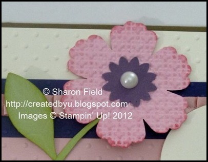 close up with texture and blossom punched flower