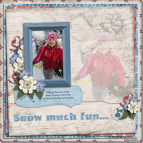 SnS-SnowMuchFun
