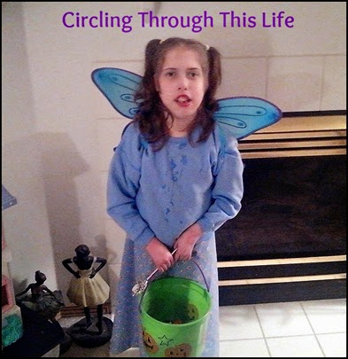 The Blue Fairy ~ Random Thoughts from Circling Through This Life