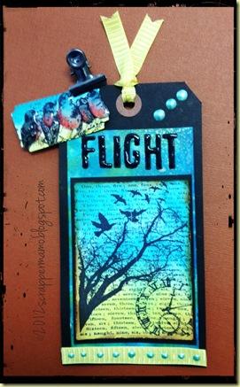 flight2 w border.jpg