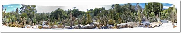 130403_Lotusland_cactus_garden_pano1