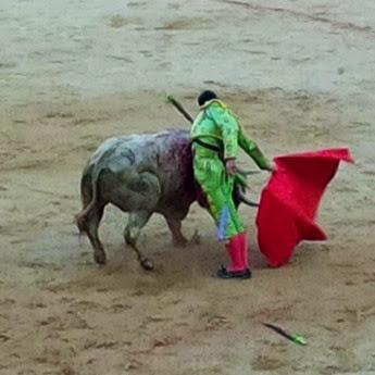 Pamplona 2014.07.12·Saúl
