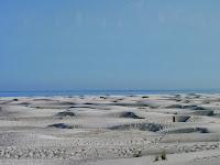 Alma_deGroot_Amelandwoestijn.JPG