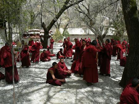 Tibet: Sera debates