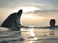plavanie5.jpg