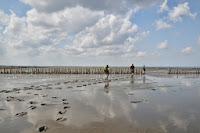 Luca_vanDuren_Walking the mudflats near Uithuizen.JPG