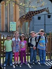 5-25-2011 zoo field trip 022